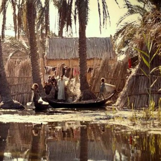 Marshes in Iraq