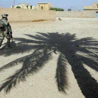 Under a palm tree