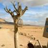 Cafe in the desert